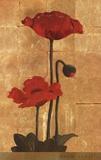 Golden Poppy II Posters by Adam Lewis