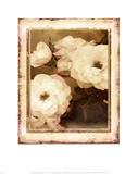 Rose- White Posters par Linda Maron