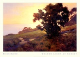 GOLDEN LIGHT AT SUNSET Prints by Brian Blood
