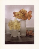 Frosted Glass Vases IV Poster by Sondra Wampler