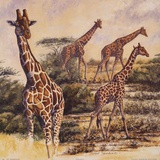 Safari III Prints by Gary Blackwell