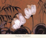 White Blossom II Prints by Nolan Winkler