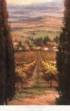 Cypress View Prints by Rosa Chavez