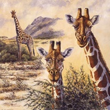 Safari IV Prints by Gary Blackwell