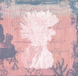 Seaside Coral II Poster by Paula Scaletta