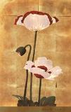 Golden Poppy I Art by Adam Lewis