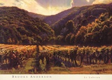 Le Luberon Prints by Brooks Anderson