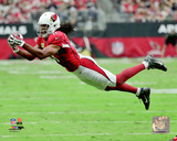 Larry Fitzgerald 2016 Action Photo