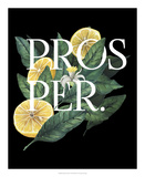 Prosper & Thrive I Prints by Grace Popp