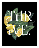 Prosper & Thrive II Print by Grace Popp