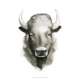 Watercolor Buffalo Poster by Grace Popp