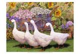 Garden March III Prints by Marcia Matcham
