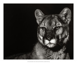 Scratchboard Nightfall Giclee Print by Julie Chapman