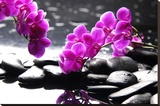 Branch Purple Orchid Flower With Therapy Stones Prints by  crystalfoto