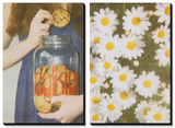 Cookies and Daisies Art by Jena Ardell