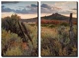 Southern Utah Roadside Print by Vincent James