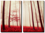 In the Footsteps of Fairy Tales Prints by Philippe Sainte-Laudy