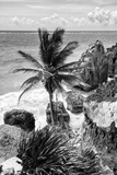 ¡Viva Mexico! B&W Collection - Caribbean Coastline in Tulum Photographic Print by Philippe Hugonnard