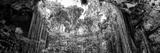 ¡Viva Mexico! Panoramic Collection - Ik-Kil Cenote II Reproduction photographique par Philippe Hugonnard