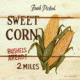 Maïs - Fresh Picked Sweet Corn Reproduction d'art par David Carter Brown