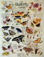 Butterfly Garden Tin Sign by R. Lee