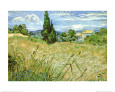 Green Wheat Field with Cypress (van Gogh) Posters