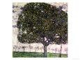 The Apple Tree, 1916 Giclée-tryk af Gustav Klimt