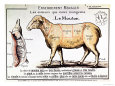 Mutton: Diagram Depicting the Different Cuts of Meat Giclee Print