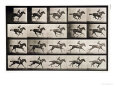 Eadweard Muybridge Posters