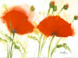 Poppies in the Wind II Kunsttryk af Marthe