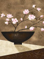 Cherry Blossoms in Bowl Kunsttryk af Jo Parry