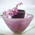 Orkidéer Kunsttryk af H. Orth