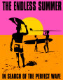 Endless Summer: Alegrias de Verão Posters