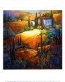 Morning Light Tuscany Kunsttryk af Nancy O'toole