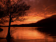 Red Sky at Sunset, Coniston Water, Consiton, Lake District, Cumbria, England, United Kingdom Fotografisk tryk af Pearl Bucknall