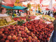 Fruit and Vegetable Market, Pula, Istria Coast, Croatia Fotografie-Druck von Christian Kober