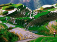 Zhuang Minority Girl in Terraced Rice Paddies, Long Ji, Guangxi, China Photographic Print by Keren Su