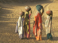 Girls Wearing Sari with Water Jars Walking in the Desert, Pushkar, Rajasthan, India Photographic Print by Keren Su