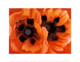 Coquelicots orientaux Reproduction d'art par Georgia O'Keeffe