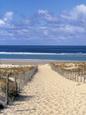 Fotografías en color de paisajes de playas Posters