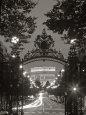Triumfbuen, Paris, Frankrig Fotografisk tryk af Peter Adams