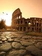 Colosseum og Via Sacra, Solopgang, Rom, Italien Fotografisk tryk af Michele Falzone