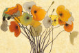Orange Flowers (Decorative Art) Posters