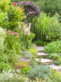 Gravel and Wood Steps Leading up Through Informal Summer Border Photographic Print by Mark Bolton