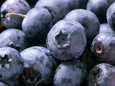 Blueberries Photographic Print by Susie Mccaffrey