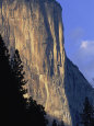 El Capitan in Yosemite National Park Photographie par Paul Nicklen