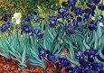 Süsenler (Irises, Saint-Remy, c.1889) Sanatsal Reprodüksiyon ilâ Vincent van Gogh