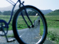 Cyclists Seen Through Bicycle, Hana, USA Photographic Print by Holger Leue