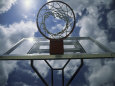 Basket-ball - photographies couleur Posters