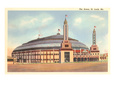 The Arena, St. Louis, Missouri Giclee Print